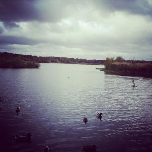 Fleet pond 2